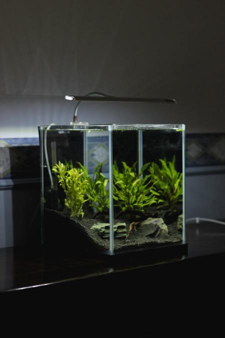 aquariumverlichting