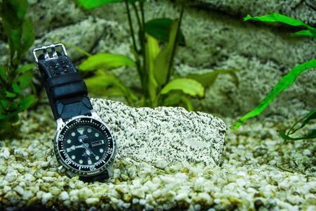 aquarium bodemreiniger