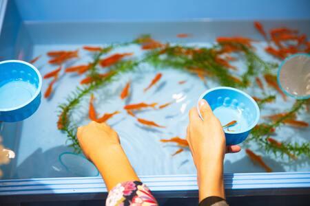 aquarium onderkast